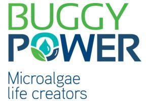 http://ccilc.pt/cn/wp-content/uploads/2011/05/buggypower-300x200.jpg