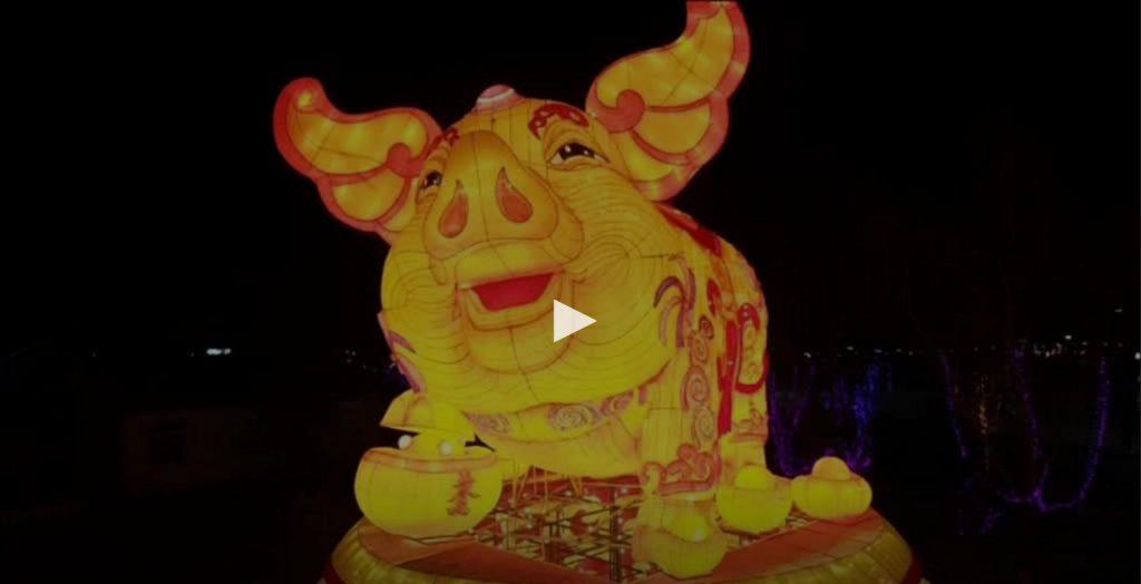 Ano do Porco começa com um novo acordo comercial entre Portugal e China